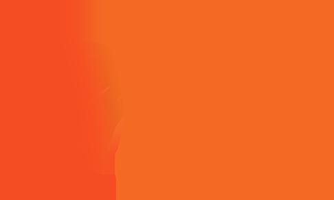 Foxteeshirt