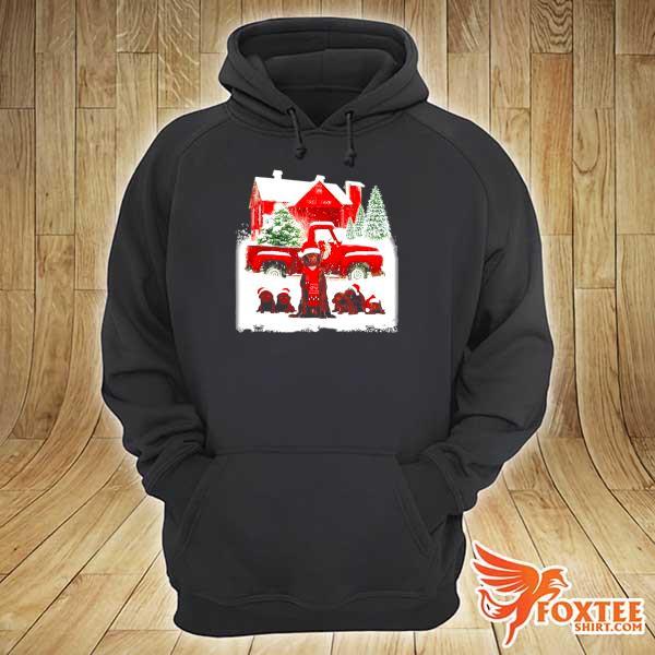 Chocolate Labrador Santa hat red Truck tree farm Christmas s hoodie